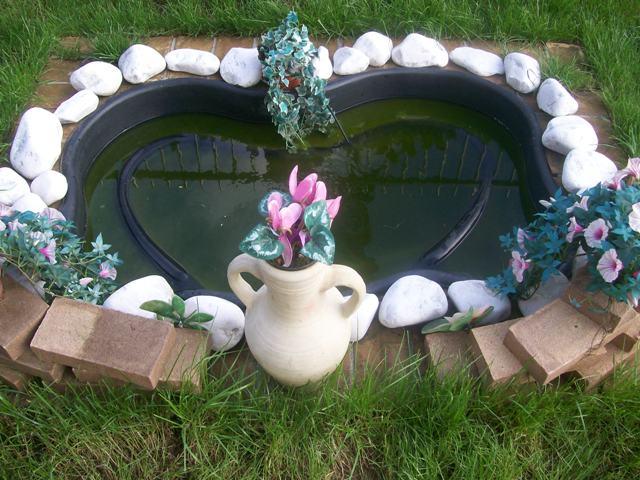 Domande sulle mia tartarughe d 39 acqua sanguefreddo net for Tartarughe nel laghetto