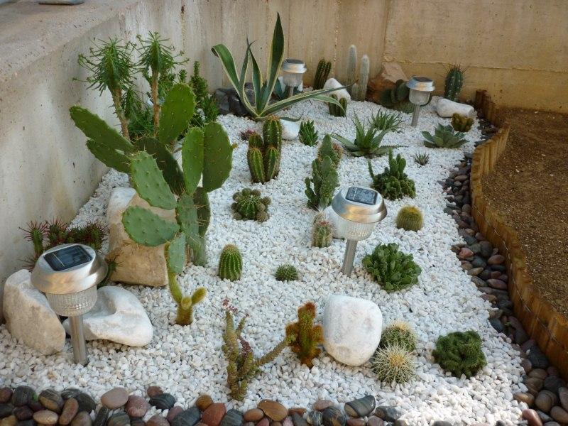 idee per giardino con piante grasse ~ ulicam.net = varie forme di ... - Piccolo Giardino Con Ghiaia