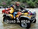 Quad in Rosa Foto e Video